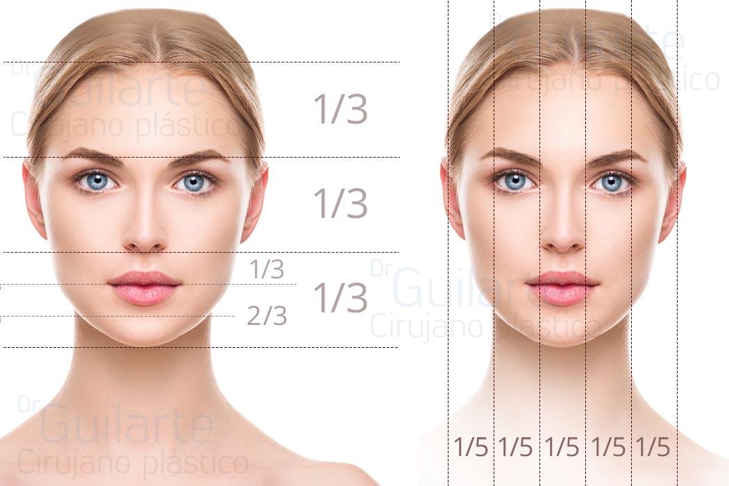 La cara perfecta: relaciones y proporciones exactas en el rostro